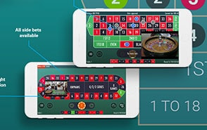 roulette mobile system